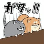 今ならLINE LIVEを友だちに追加すると、ボンレス犬&猫のコラボスタンプがもらえる!